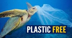 Immagine campagna Plastic Free