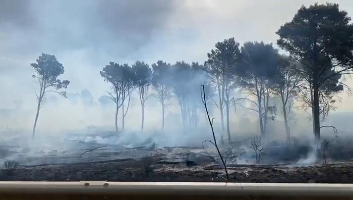 Palermo. Incendio boschivo a Ciminna, arrestato 61enne del posto