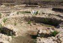 Salemi, rogo nell'area archeologica di Mokarta