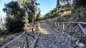 Sentiero del Bosco di Alcamo