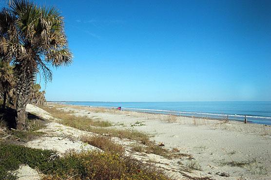 Edisto Beach Huntington Beach and Hunting Island State