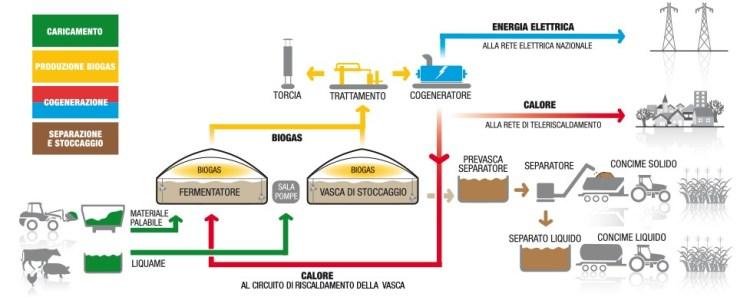Biogas - schema_processo