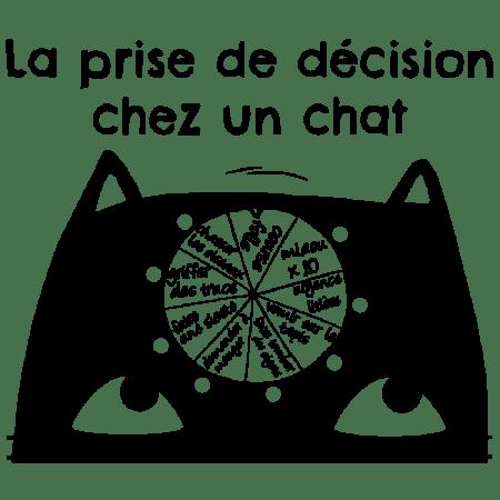 la prise de décision chez un chat