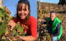 Unsere 1. Online Weintastings veranstalten wir im Februar