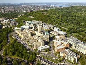 © Université de Montréal
