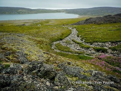 Arqvilliit landscape. Photo credit: Yvan Pouliot