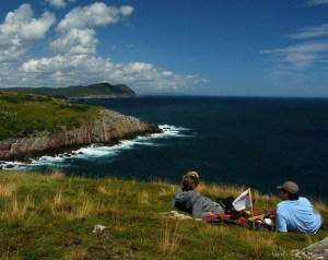 Lighthouse Picnics Newfoundland