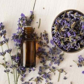 Herbs-Sleep-Supplements
