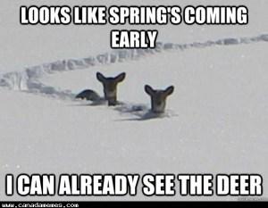Oh, Hey Spring!