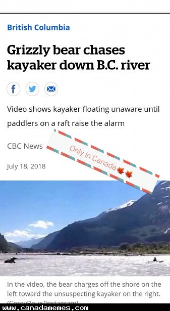 🇨🇦 Grizzly chases kayaker down river near Squamish, B.C