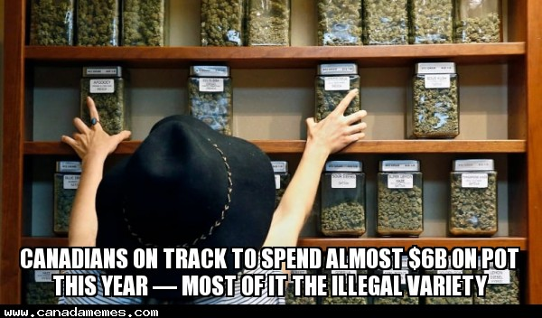 🇨🇦 Canadians on track to spend almost $6B on pot this year - most of it the illegal variety