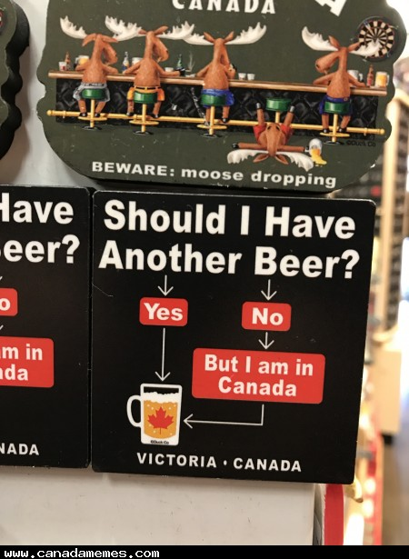 🇨🇦 Should I have another beer?