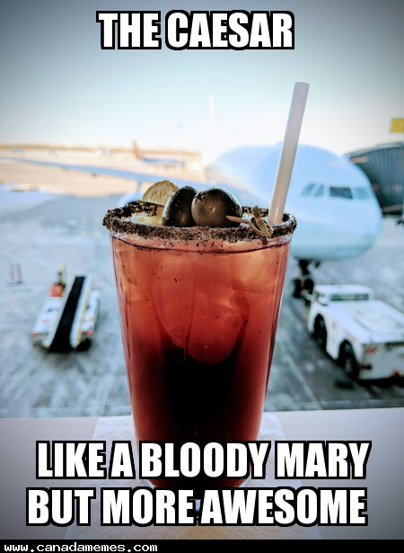 🇨🇦 The Caesar - Like a Bloody Mary but more awesome