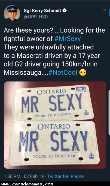 🇨🇦 Are these your license plates?