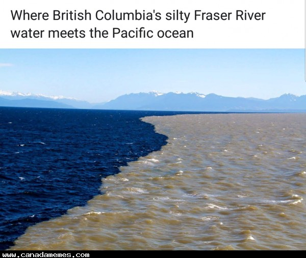 🇨🇦 Very cool! Where the Fraser River meets the Pacific Ocean