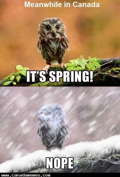 🇨🇦 April fools day!