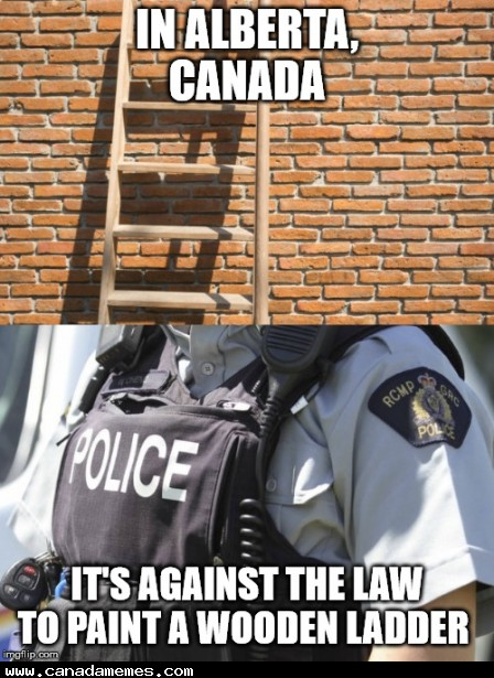 🇨🇦 Turns out it's illegal to paint a wooden ladder in Alberta