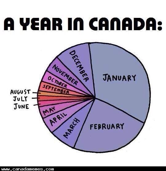 🇨🇦 A year in Canada