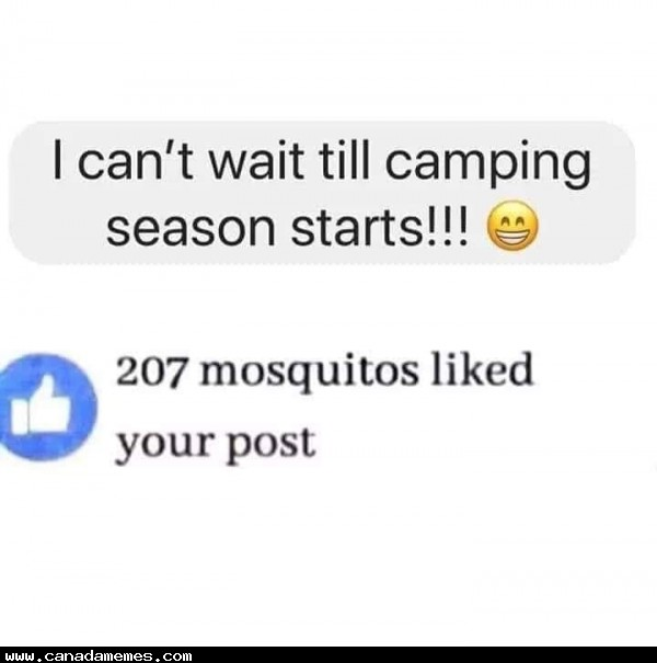 🇨🇦 Camping season is upon us! Get the mosquito repellent ready