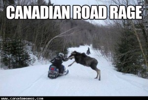 🇨🇦 Canadian Road Rage
