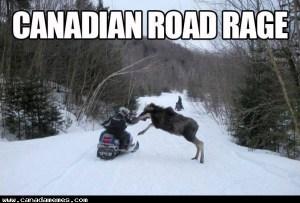 🇨🇦 Canadian Road Rage