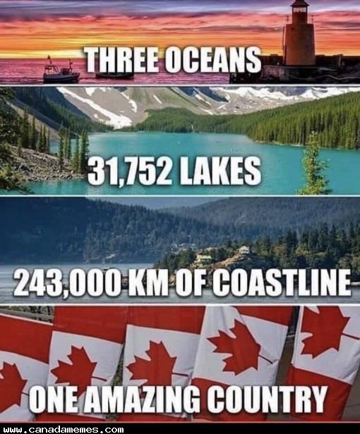 🇨🇦 LIKE IF YOU ARE PROUD TO BE CANADIAN!