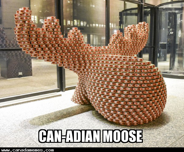 🇨🇦 CANadian Moose