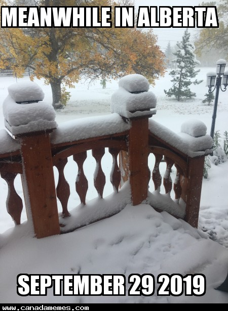 🇨🇦 Meanwhile in Alberta (Sep 29 2019)
