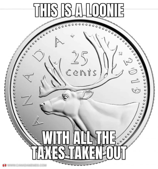 This is a loonie