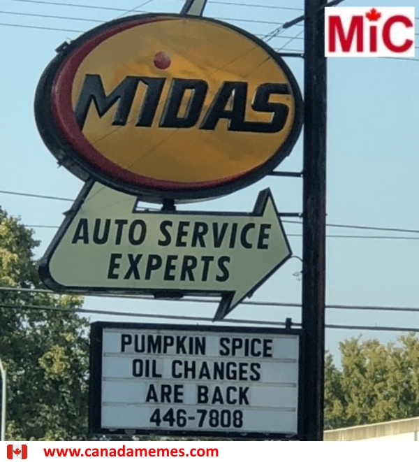 Pumpkin Spiced Oil Changes Are Back!!
