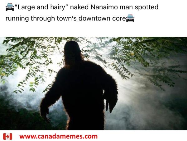 Sasquatch spotted in Nanaimo, BC