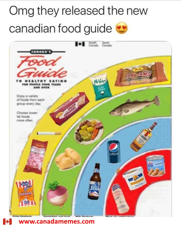 Updated Canadian Food Guide