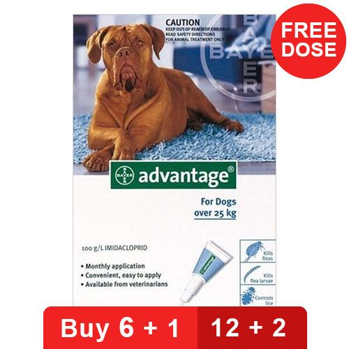 Advantage for Dogs : Buy Advantage for Dogs Online at ...