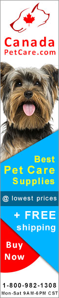 Heartwormers and flea and tick at cheapest prices online