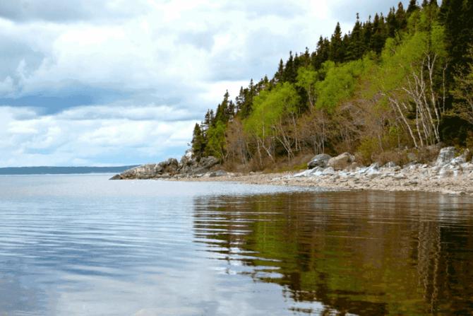 Gander, Newfoundland & Labrador