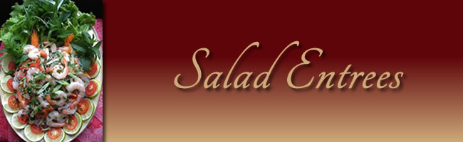 salad_entrees_banner4