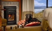 Long Beach Lodge Resort - Tofino Canadian Affair