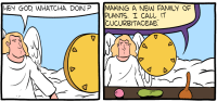 """[The first two panels from the Saturday Morning Breakfast Cereal comic """"Cucurbits"""". In panel 1, an angel approaches God and asks, """"Hey God, whatcha doin'?"""" In panel two, God shows a work bench with a melon, a gourd, and a squash, and replies: """"Making a new family of plants. I call it """"cucurbitaceae"""".]"""