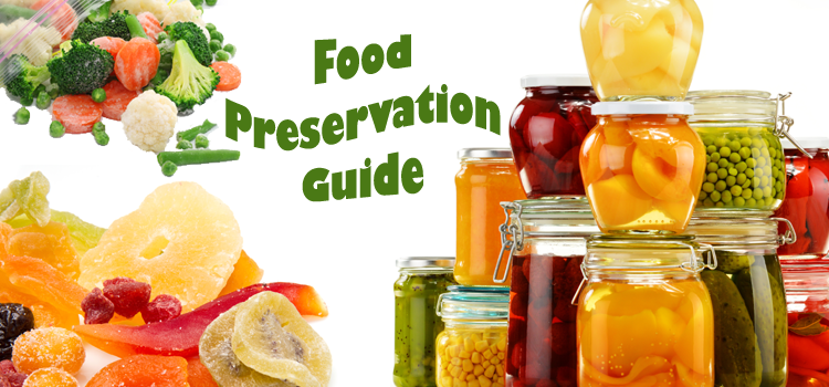 Food Preservation Guide – Getting Started