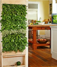 Indoor Garden and Herb Solutions | Canadian Off The Grid