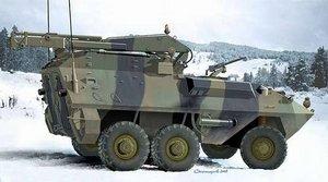 Resultado de imagen de grizzly cougar husky ace model kit