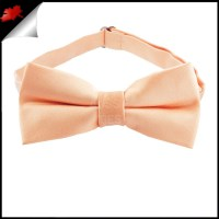 Peach Apricot Boys Bow Tie- Canadian Ties