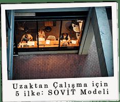 Uzaktan Çalışma için 5 ilke: SOVİT Modeli