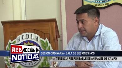 Photo of Redacción Noticias    TENECIA RESPONSABLE DE ANIMALES DE CAMPO – HCD – LAS HERAS SANTA CRUZ