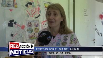 Photo of Redacción Noticias    DÍA DEL ANIMAL ZOONOSIS – LAS HERAS SANTA CRUZ