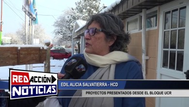 Photo of Redacción Noticias |  ALICIA SALVATIERRA – HCD – LAS HERAS SANTA CRUZ