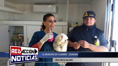 Photo of Redacción Noticias |  DRA CINTIA GALERA MEDICO PROFESIONAL VETERINARIO – LAS HERAS SANTA CRUZ