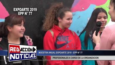 Photo of Redacción Noticias |  MUESTRA ANUAL EXPOARTE – PROFESIONALES EPP 77 – LAS HERAS SANTA CRUZ 1/2