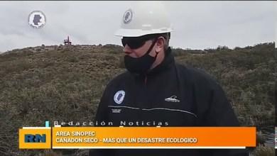 Photo of Redacción Noticias |  «Mas que un desastre ecológico» – Derrame de petroleo en un área de Sinopec en Cañadon Seco