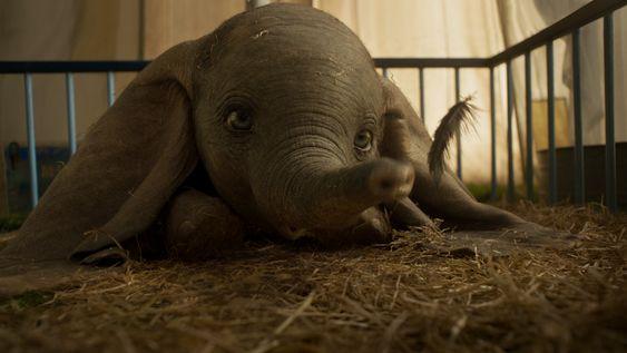 """[Reseña] """"Dumbo"""": La magia de Disney junto al ingenio de Burton"""